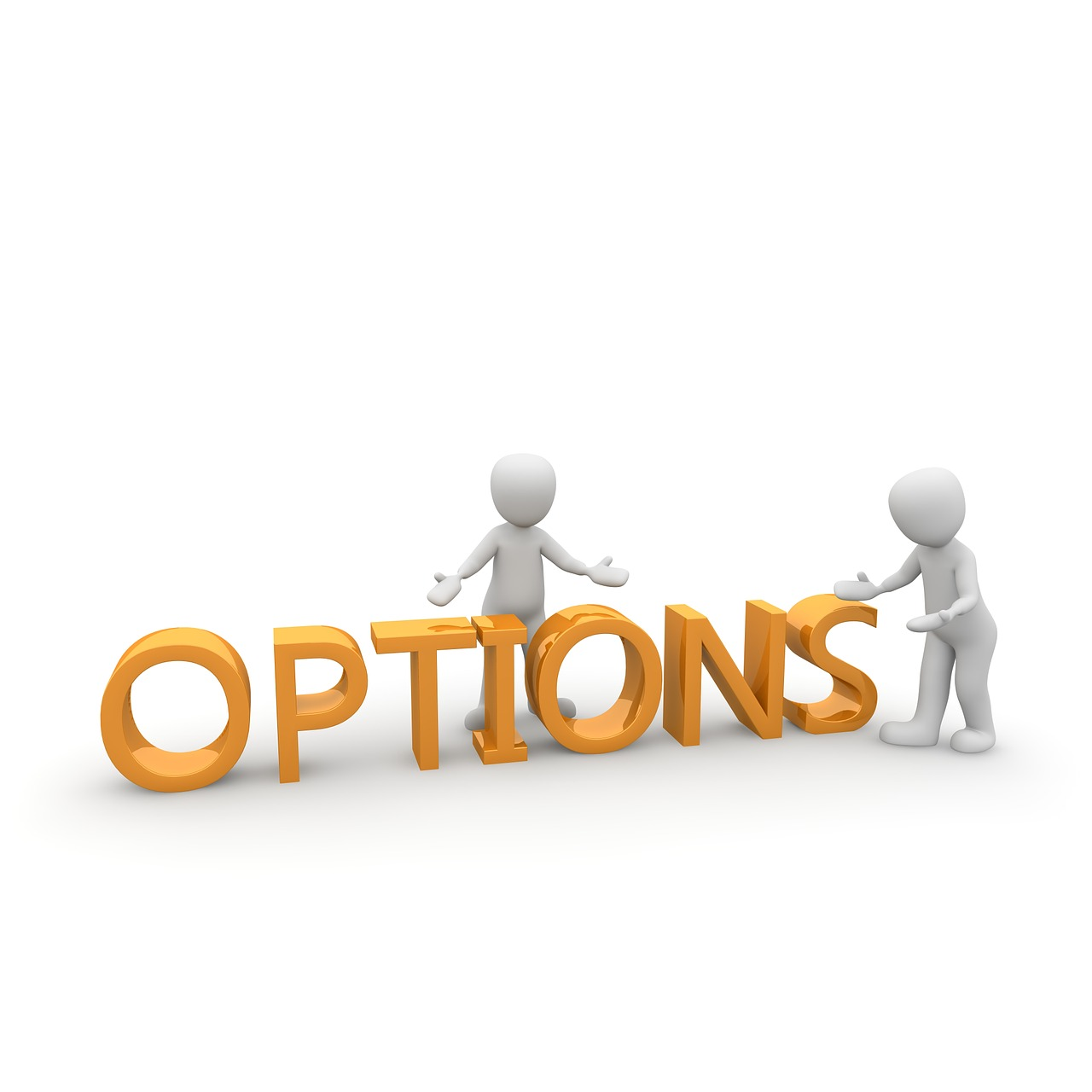options for the customer for higher sales