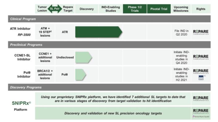 Premium отчет перед IPO Repare Therapeutics (RPTX)