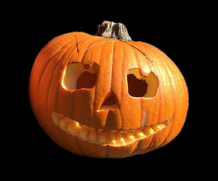 Free photo: Pumpkin, Fruit, Orange, Autumn - Free Image on Pixabay ...