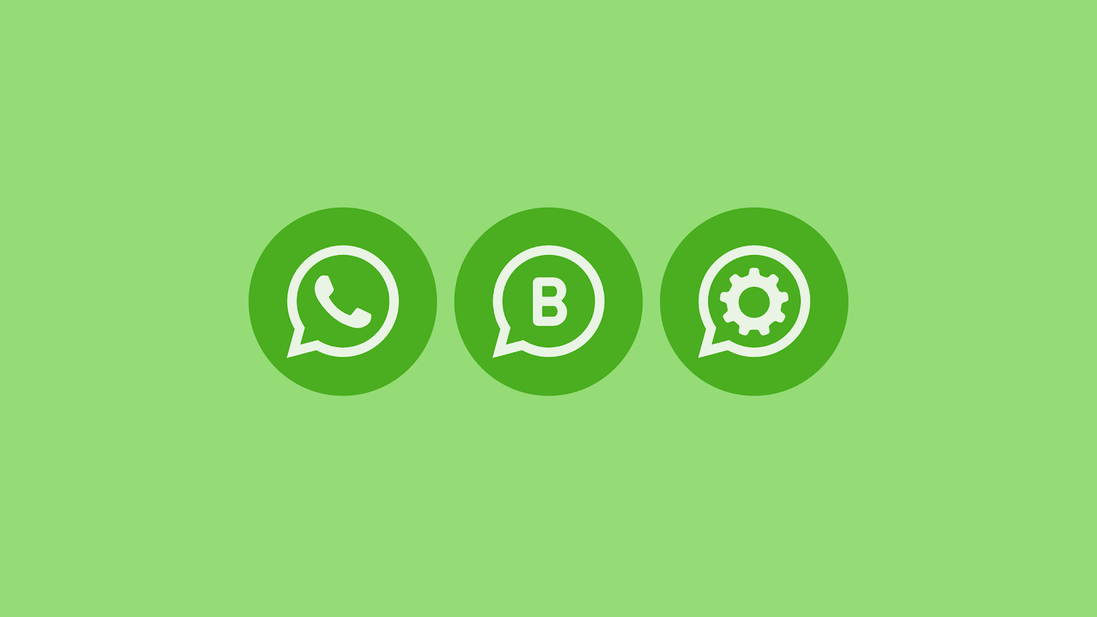utiliser WhatsApp business WhatsApp business image