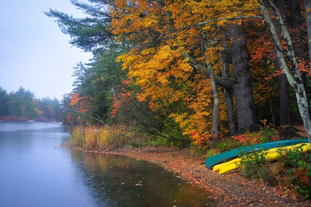 paddle in campground ideas