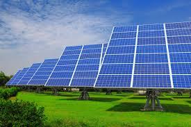 Trang trại điện mặt trời đầu tiên của SolarBK có diện tích bao nhiêu
