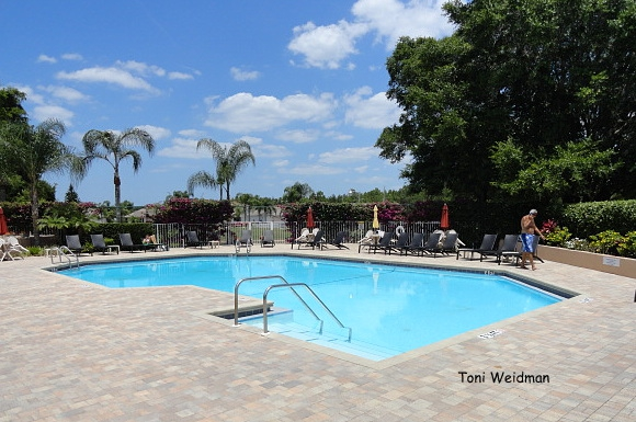 Millpond Estates - New Port Richey FL