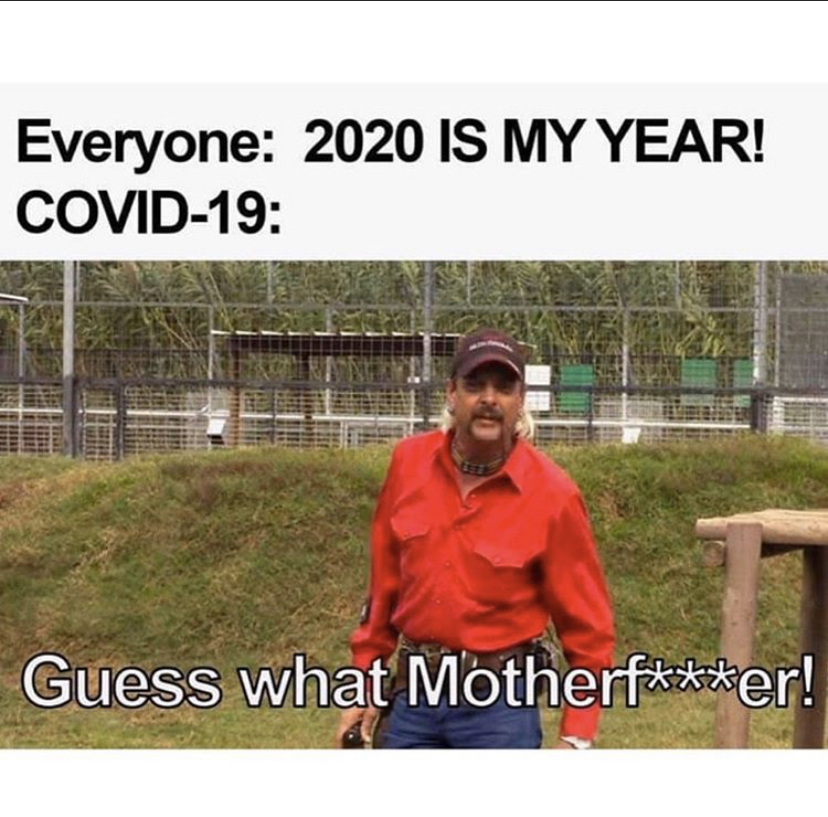 2020 is my year meme