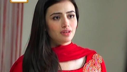 Pyaray Afzal Episode 35 Full on Ary Digital