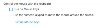 The Turn on mouse keys checkbox
