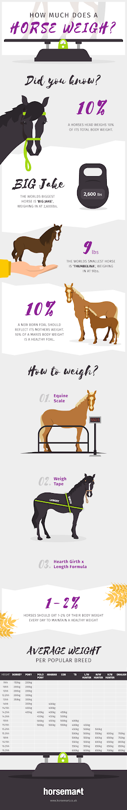 horse weight infographic