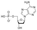 Χημική δομή της Μονοφωσφορικής δεοξυαδενοσίνης