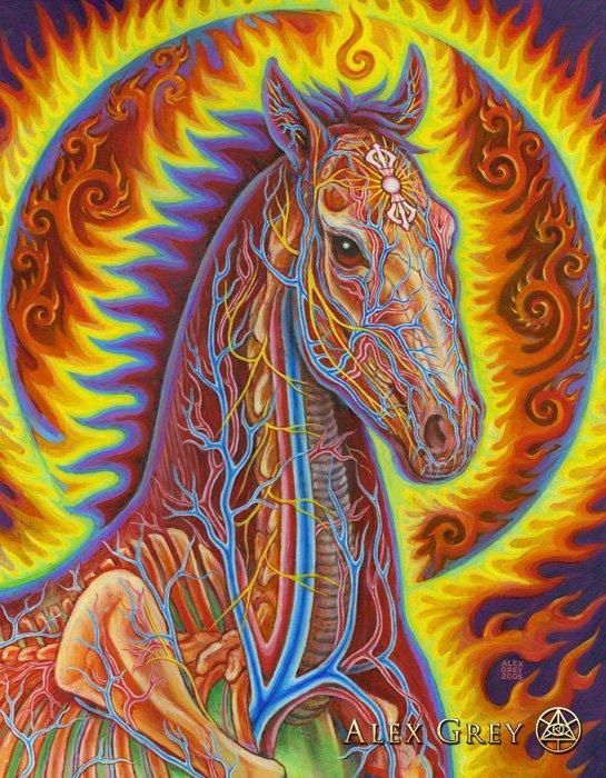 https://cdn.alexgrey.com/wp-content/uploads/2012/06/28202946/Alex_Grey_Vajra_Horse.jpg