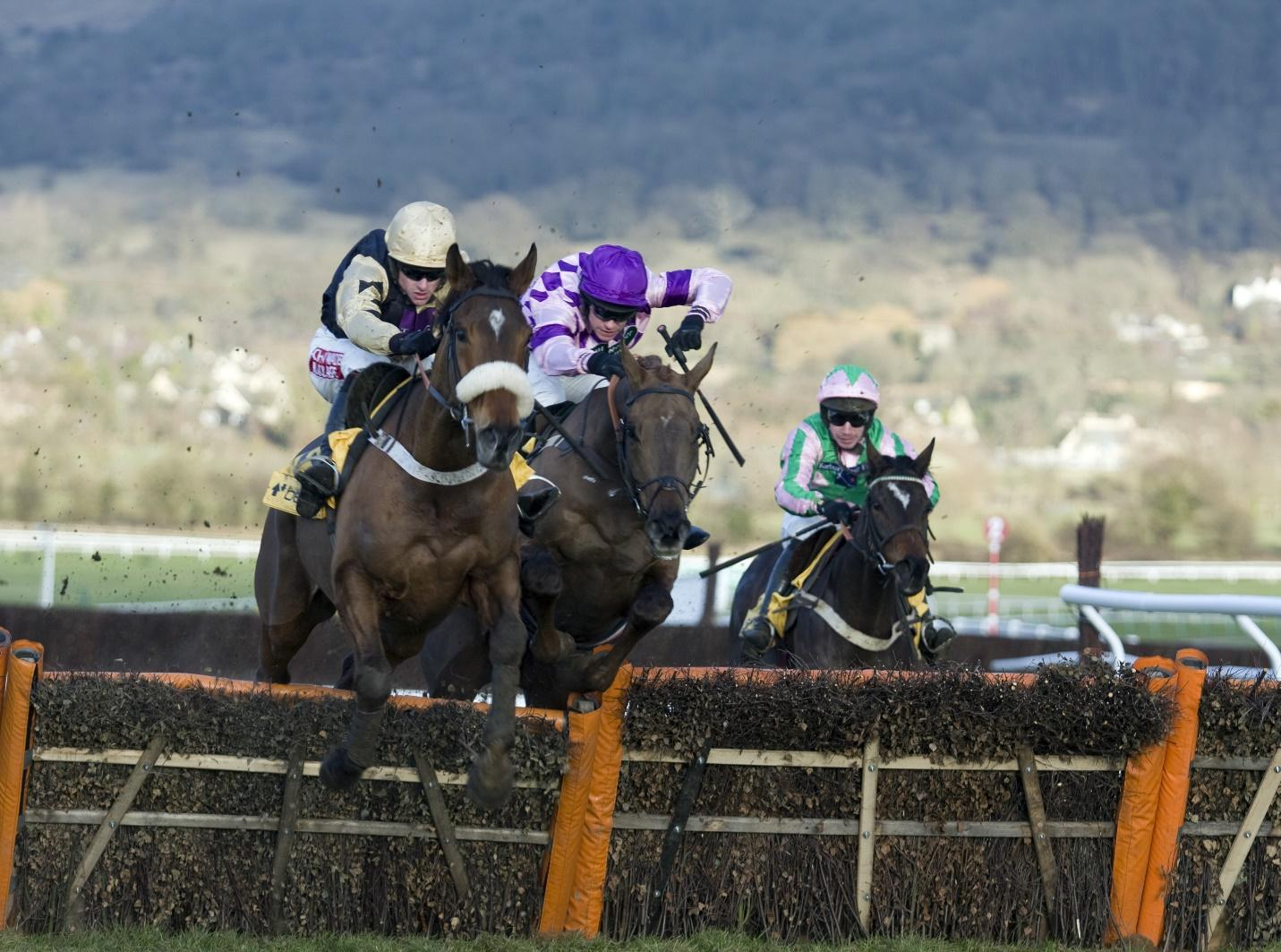 In review: the last five Champion Hurdle winners