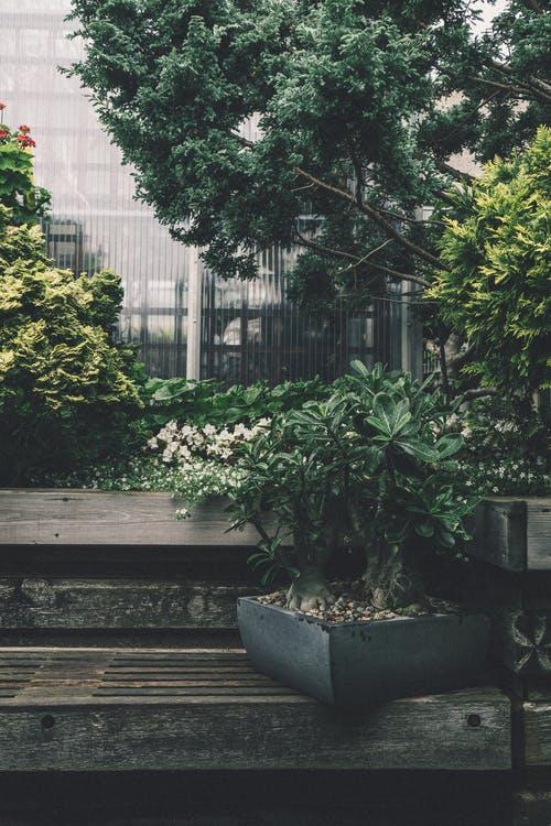 7 Ways To Make Your Garden Look Stunning Year Round   Garden
