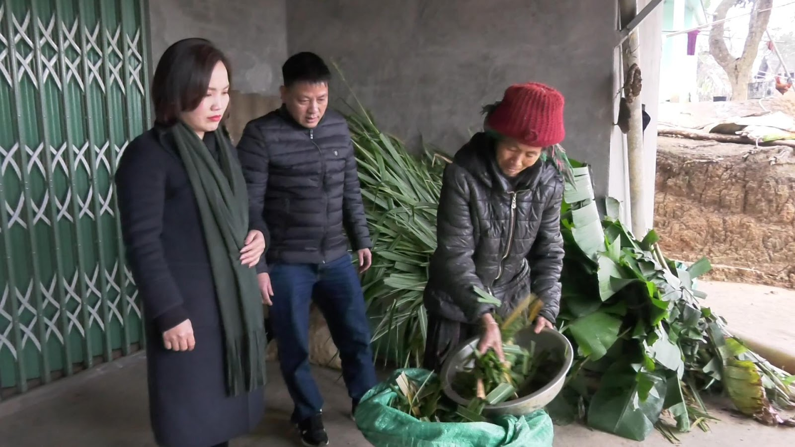 Đồng chí Sùng Hồng Mai – Phó chủ tịch UBND huyện kiểm tra công tác phòng chống rét cho gia súc tại xã Nậm Chạc