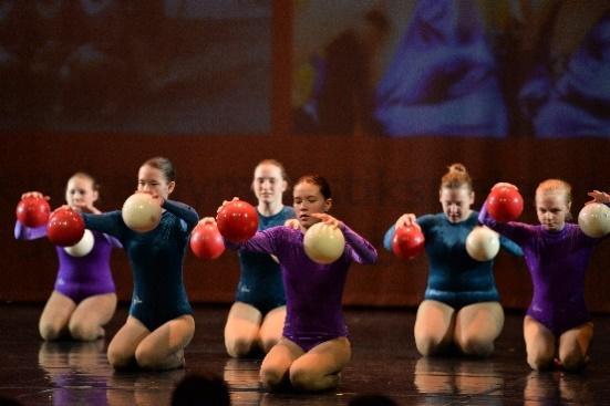 En bild som visar sport, kvinna, boll, grupp  Automatiskt genererad beskrivning