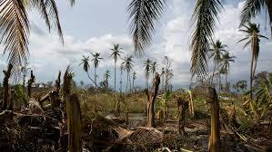 Image result for HAITI HURRICANE MATTHEW PHOTOS