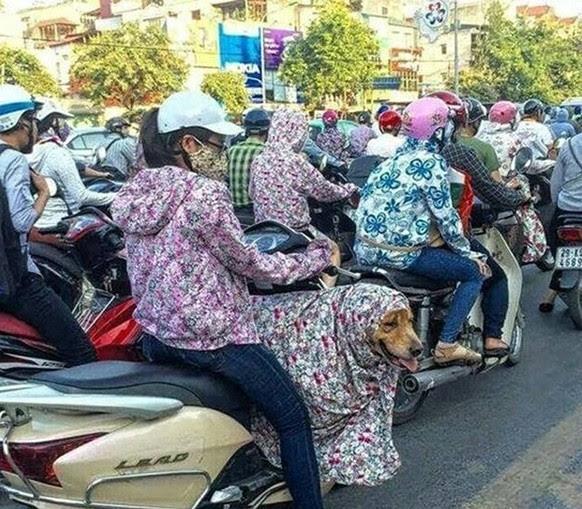 """101 """"tuyệt chiêu"""" chống nắng của phụ nữ Việt"""