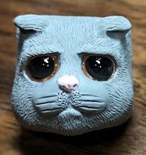 DCcaps - Sad Cat
