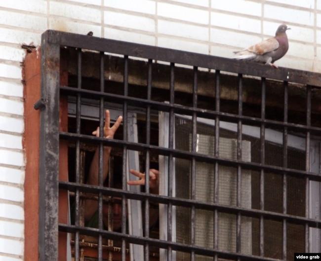 Задержанные за участие в протестах в Минске машут из окна СИЗО