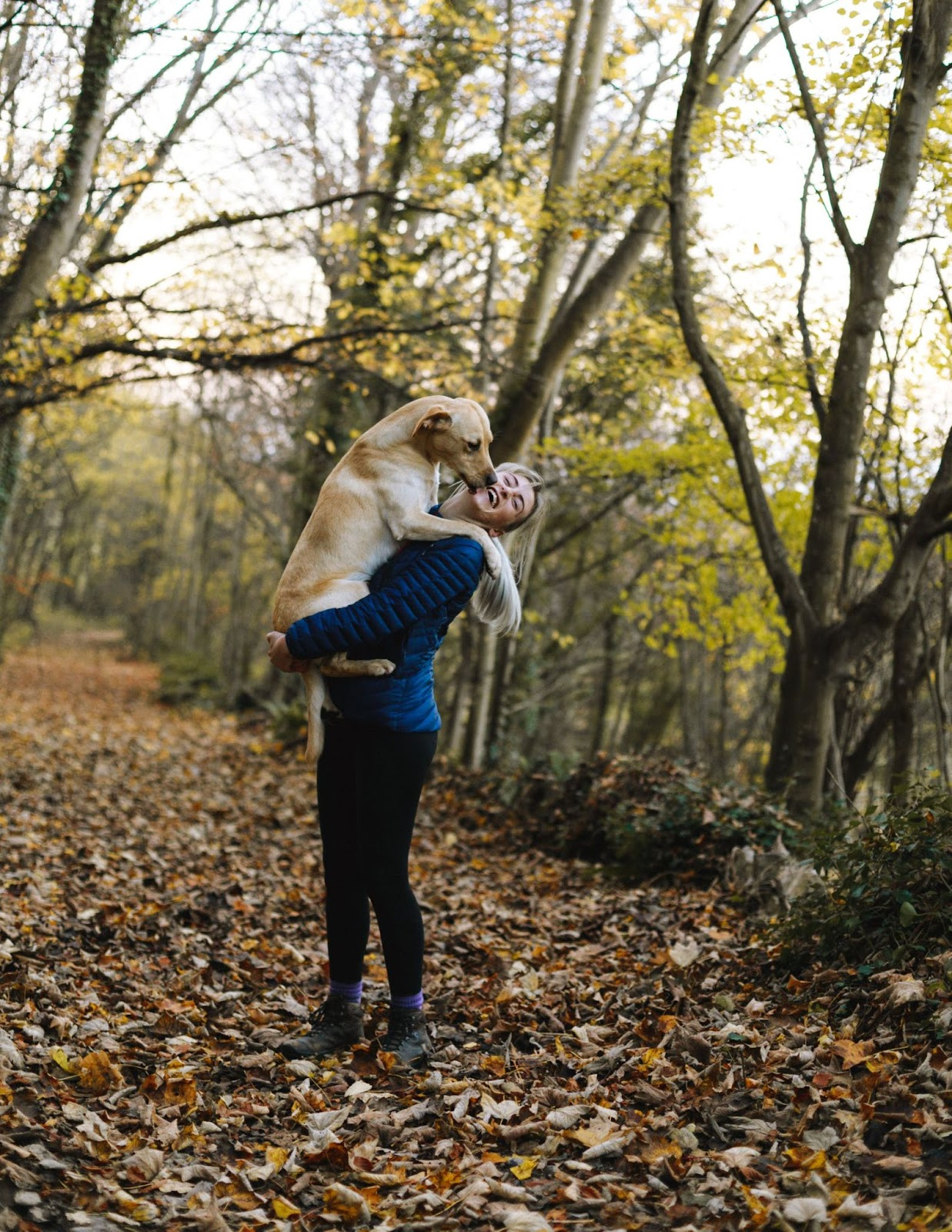 Dog Friendly Places in NYC Inwood Hill Park