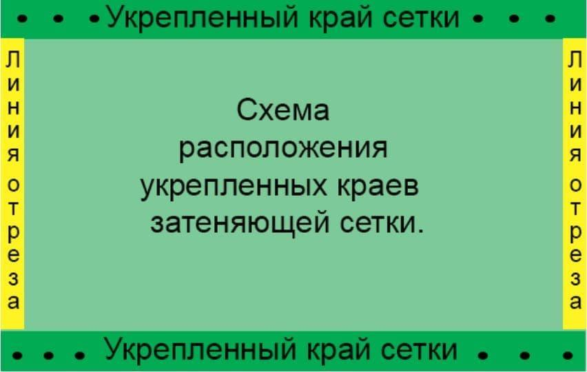 C:UsersАнтонDesktopiloveimg-compressed(41)сетка схема.jpg