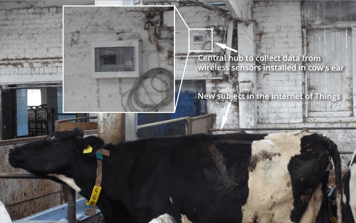 cow hub flespi