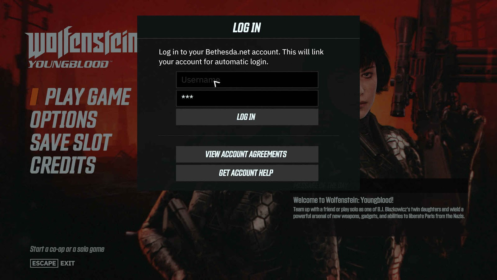Main screen waiting for the player to enter Bethesda.net account info