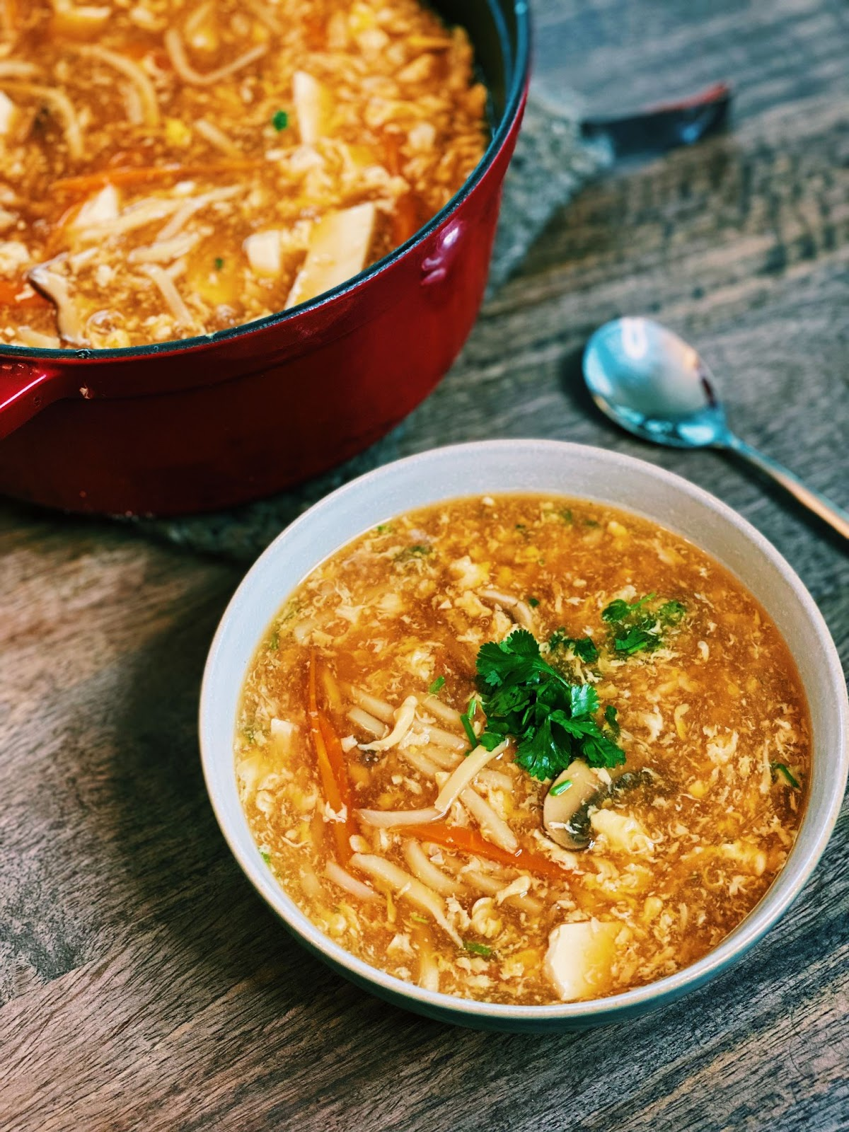 Hot and Sour Soup (15 Minutes ONLY!)