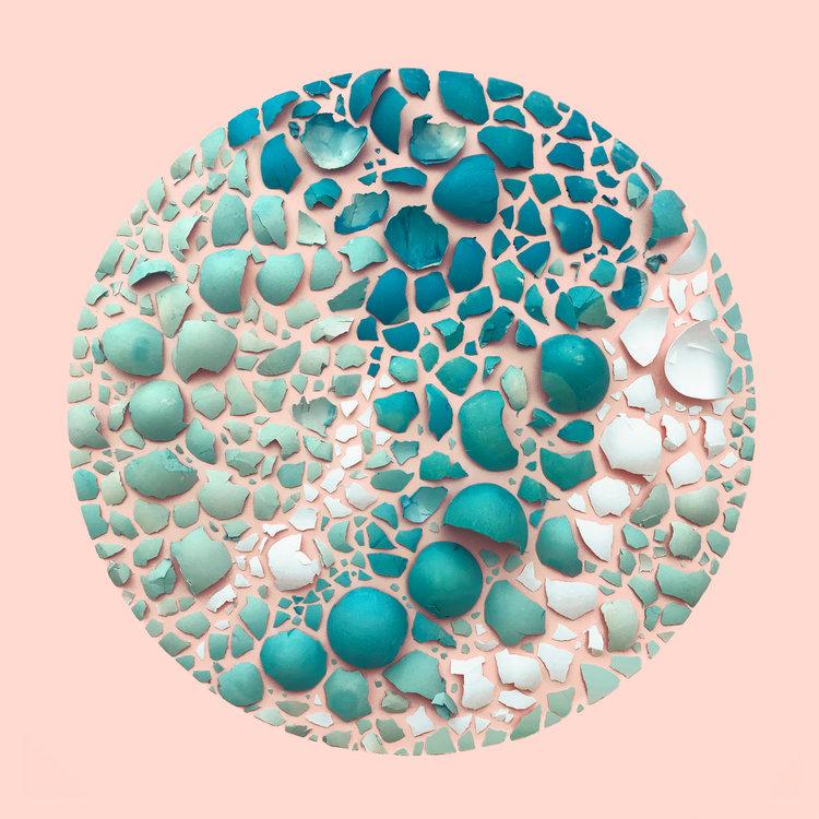 Eggshells in a Circle Kristen Meyer