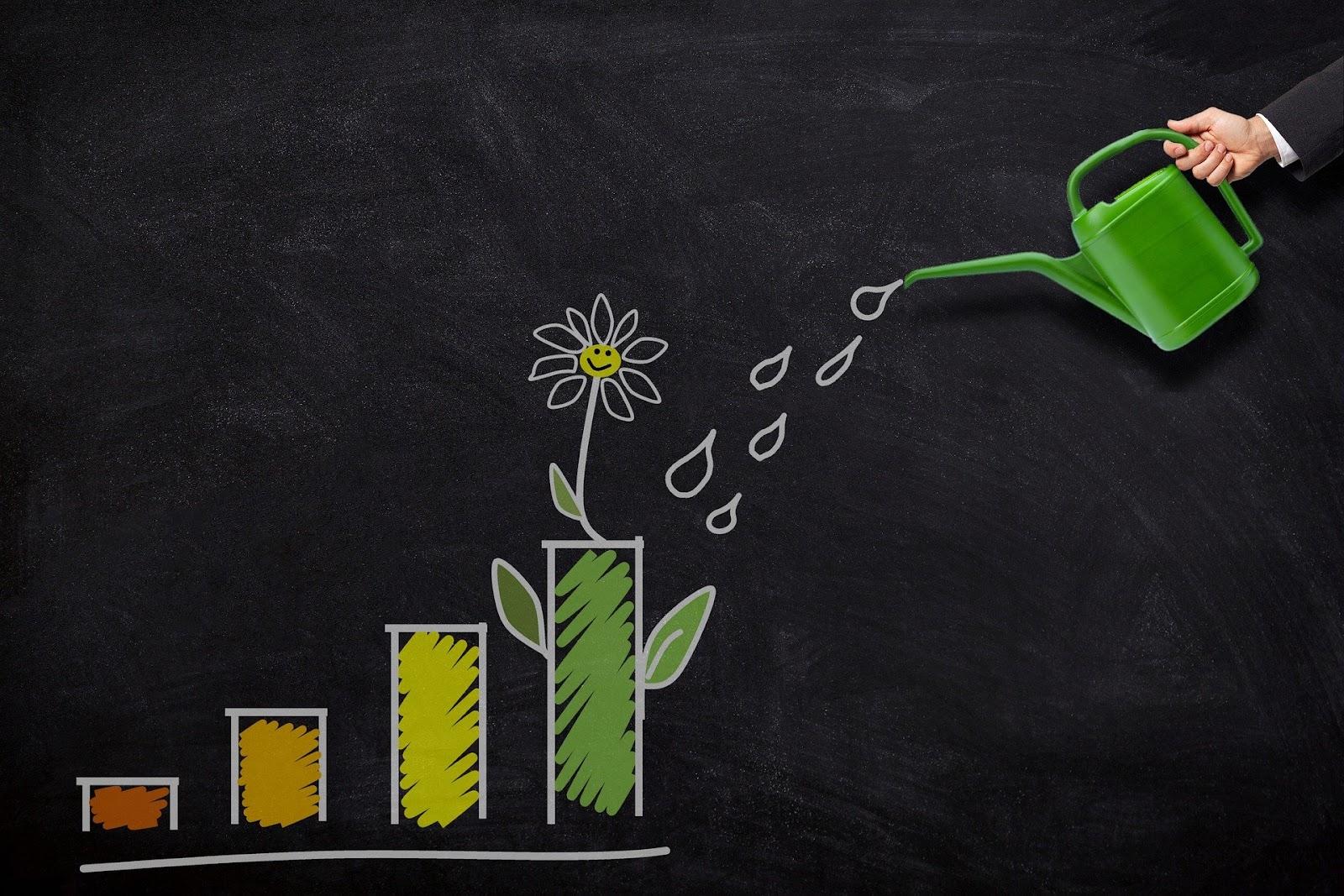 Marketing automation nurtures growth