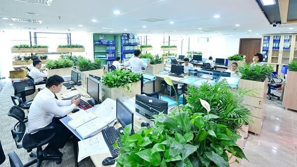 Mẫu thiết kế văn phòng làm việc xanh