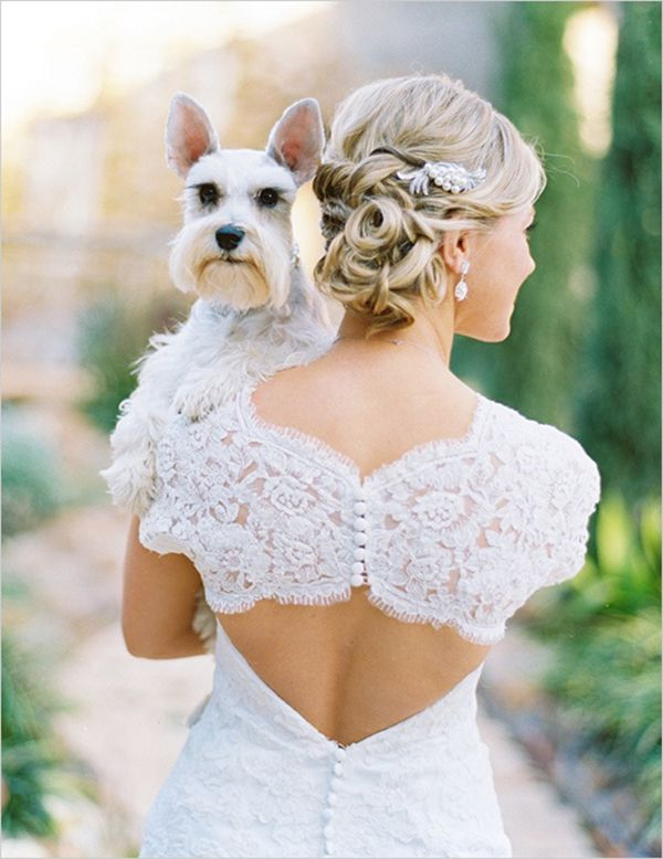 Dog of Honor: Pets at Weddings