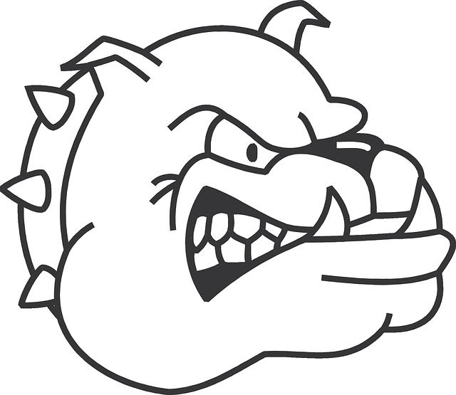 Dog, Head, Angry, Bulldog,