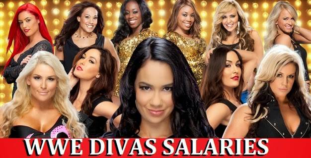 how much WWE Divas earn through wrestling