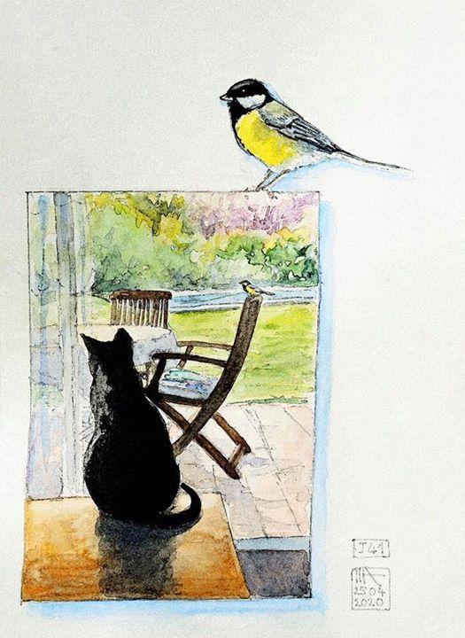 L'immagine può contenere: uccello