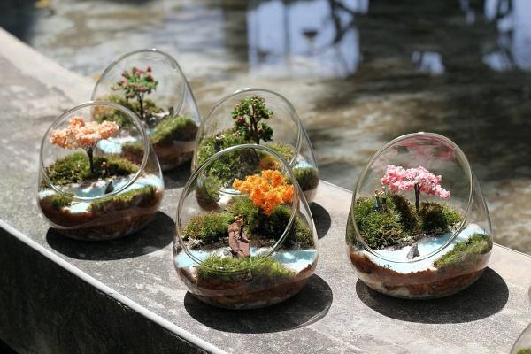 微境品-微景觀生態瓶製作體驗