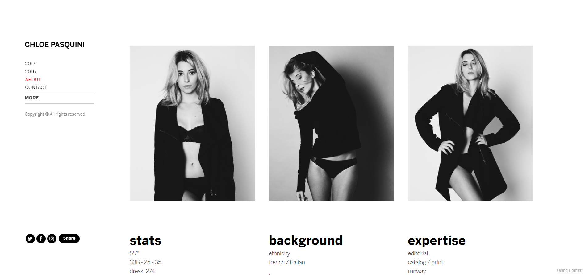 An example of a profile section of a model portfolio website