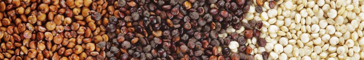 EDance-Blog-Quinoa.jpg
