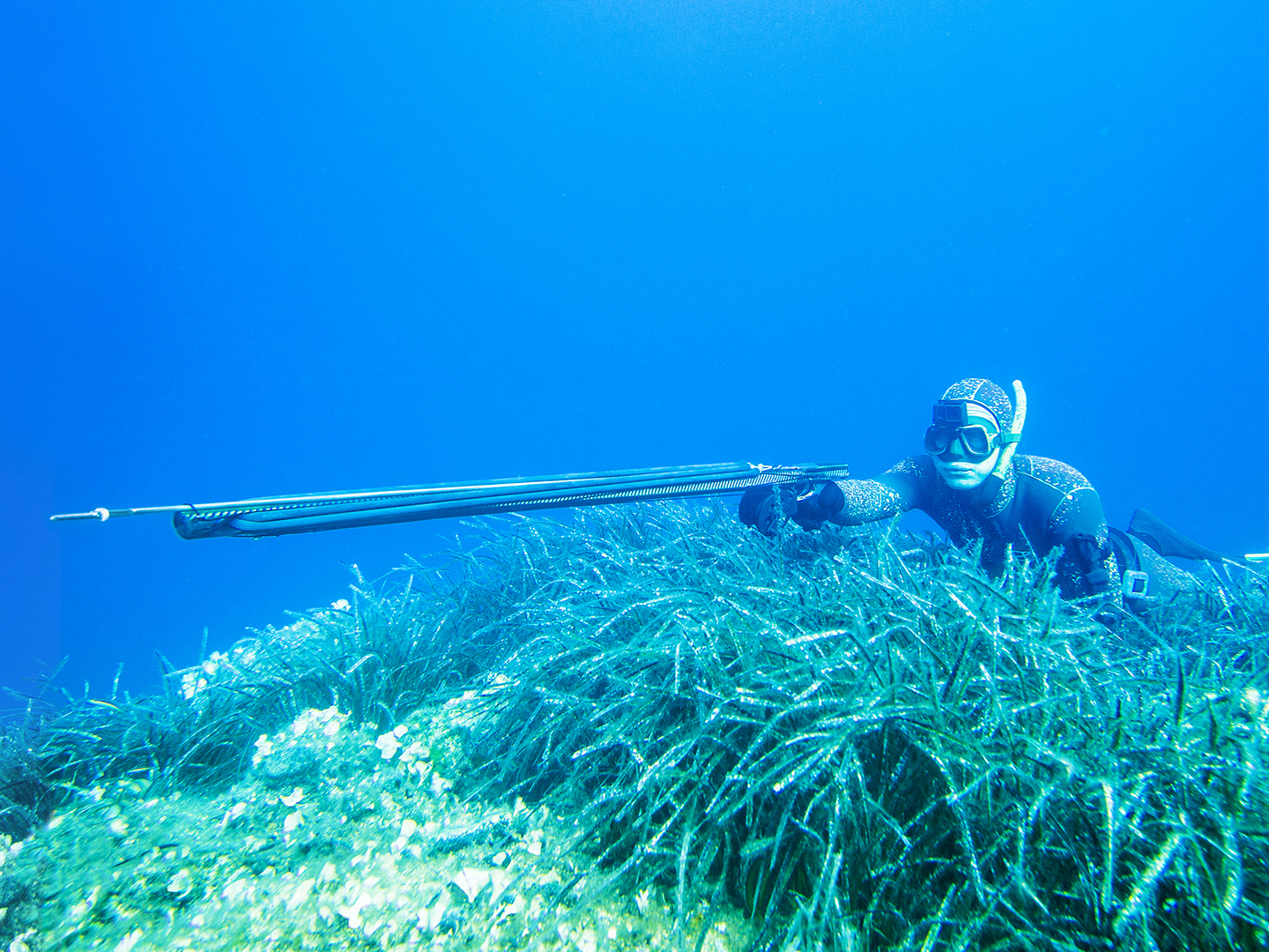 Image of a someone spearfishing on the sea bed.
