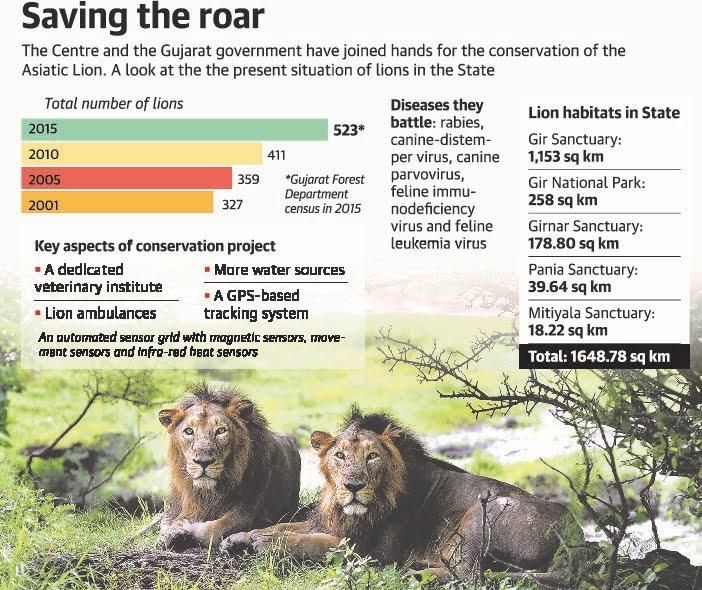 Image result for Vet institute,ambulances mooted in Rs.98 crore lion conservation plan
