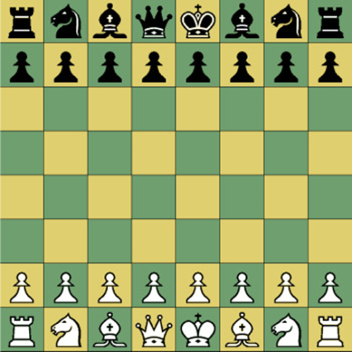 set up of the various chess pieces