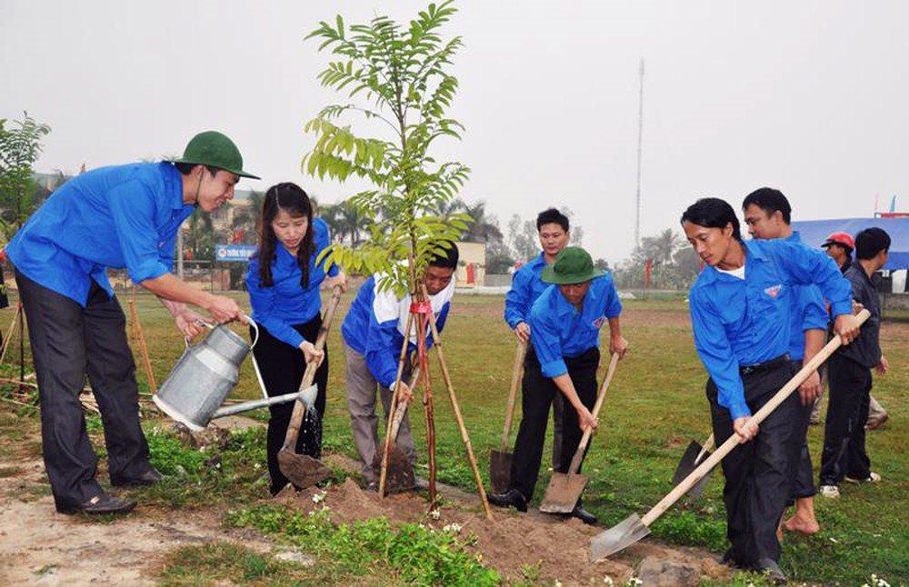 Trồng cây xanh để giảm thiểu ô nhiễm môi trường