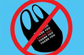 Image result for plastic bag ban