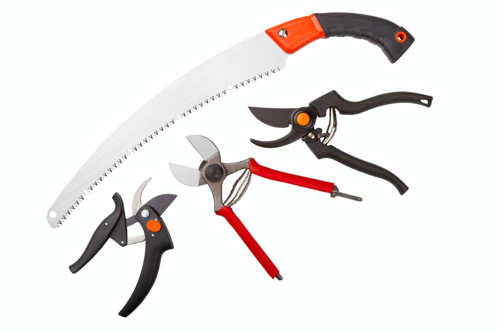 Инструменты для обрезки малины