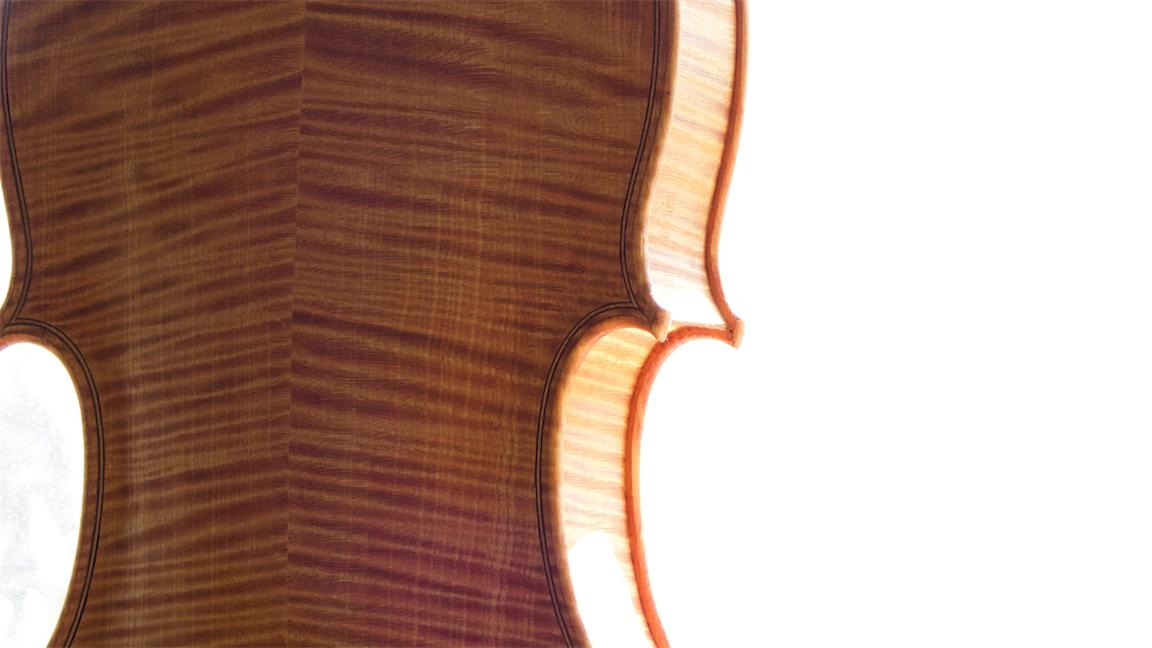 Viola 3.jpg