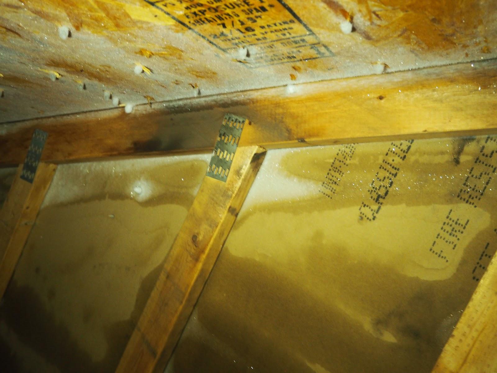 frost in attic