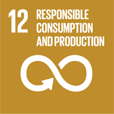 Image result for responsible consumption and production