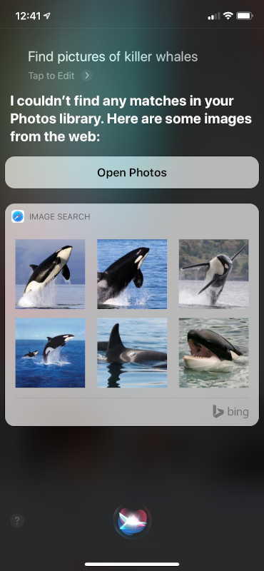 Siri UI for image results