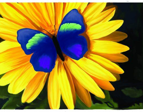 C:\Users\Надежда\Desktop\butterfly_on_a_flower_pictures_3-500x393.jpg