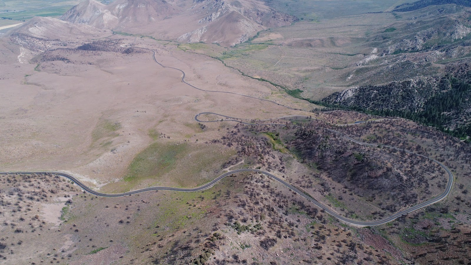 Bike climb of Monitor Pass East  - aerial drone photo of Hwy 89