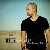 Wake Me Up (feat. Emerson Drive)