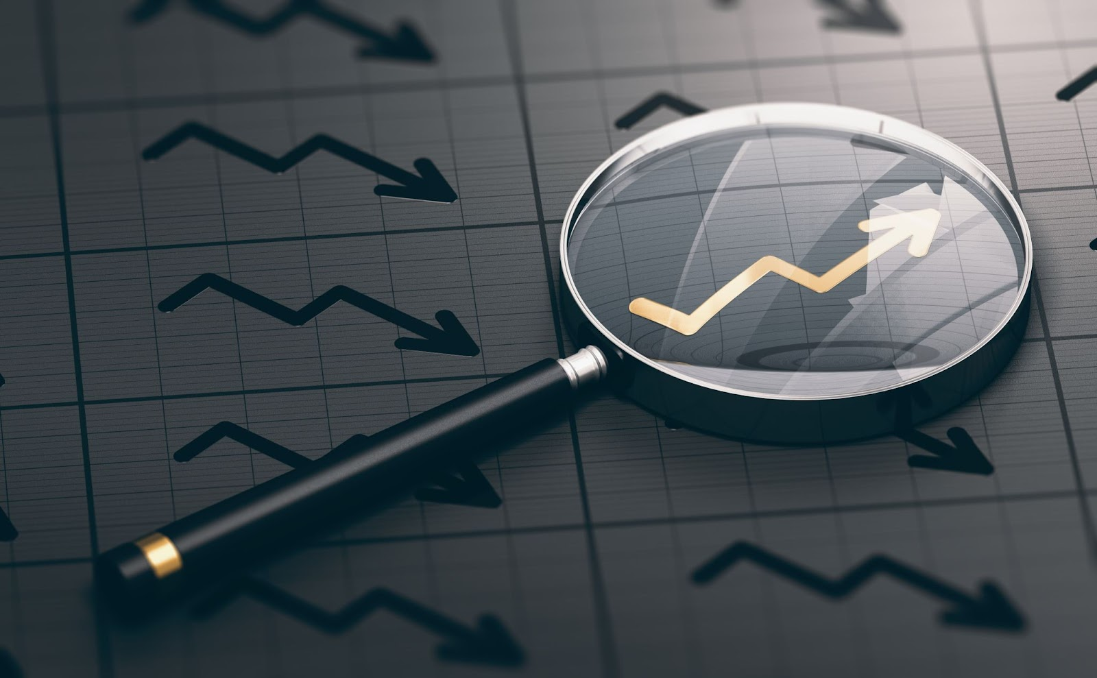 best long term dividend stocks: magnifying glass with an upward arrow in focus